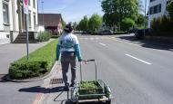 Ein Spaziergang mit Felix Brenner